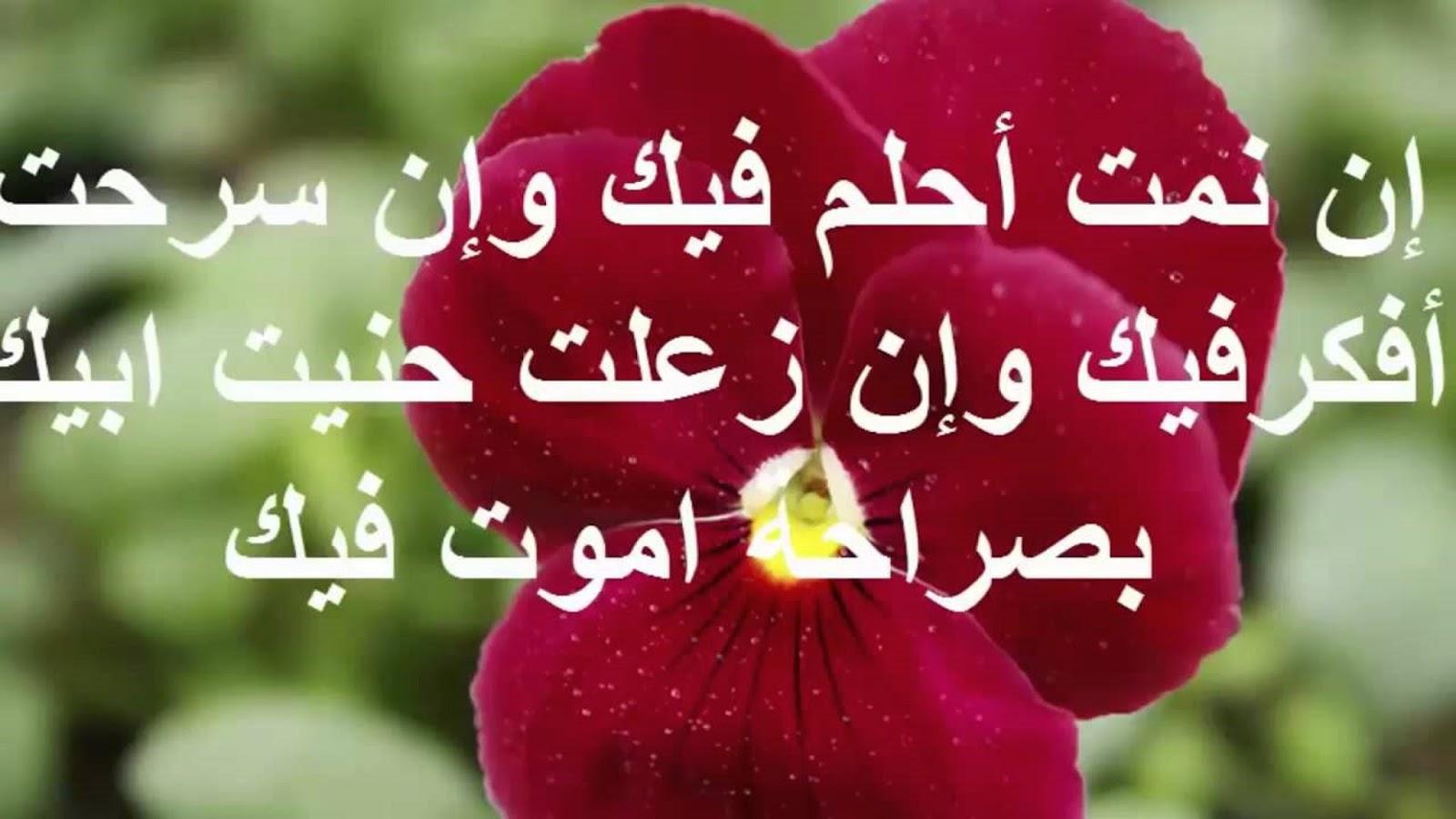 صورة رسائل حب للحبيب الغالي , اجمل رسالة حب للحبيب
