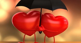 تعريف الحب , ما هو الحب وكيف نشعر به