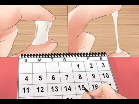 صورة كيف اعرف ايام التبويض , كيفيه معرفه ايام التبويض