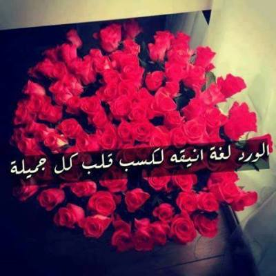 صورة حكم عن الورد , عبارات عن الورد