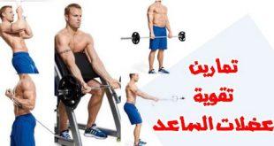 صورة تمارين العضلات , تمارين تقوية العضلات