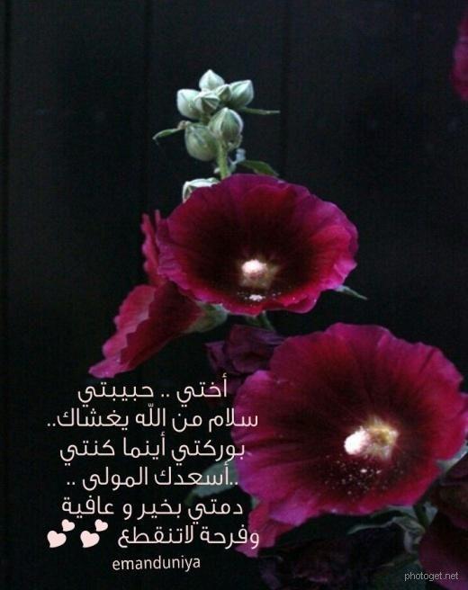 صور كلام جميل عن الاخت , اجمل الكلمات على الاطلاق