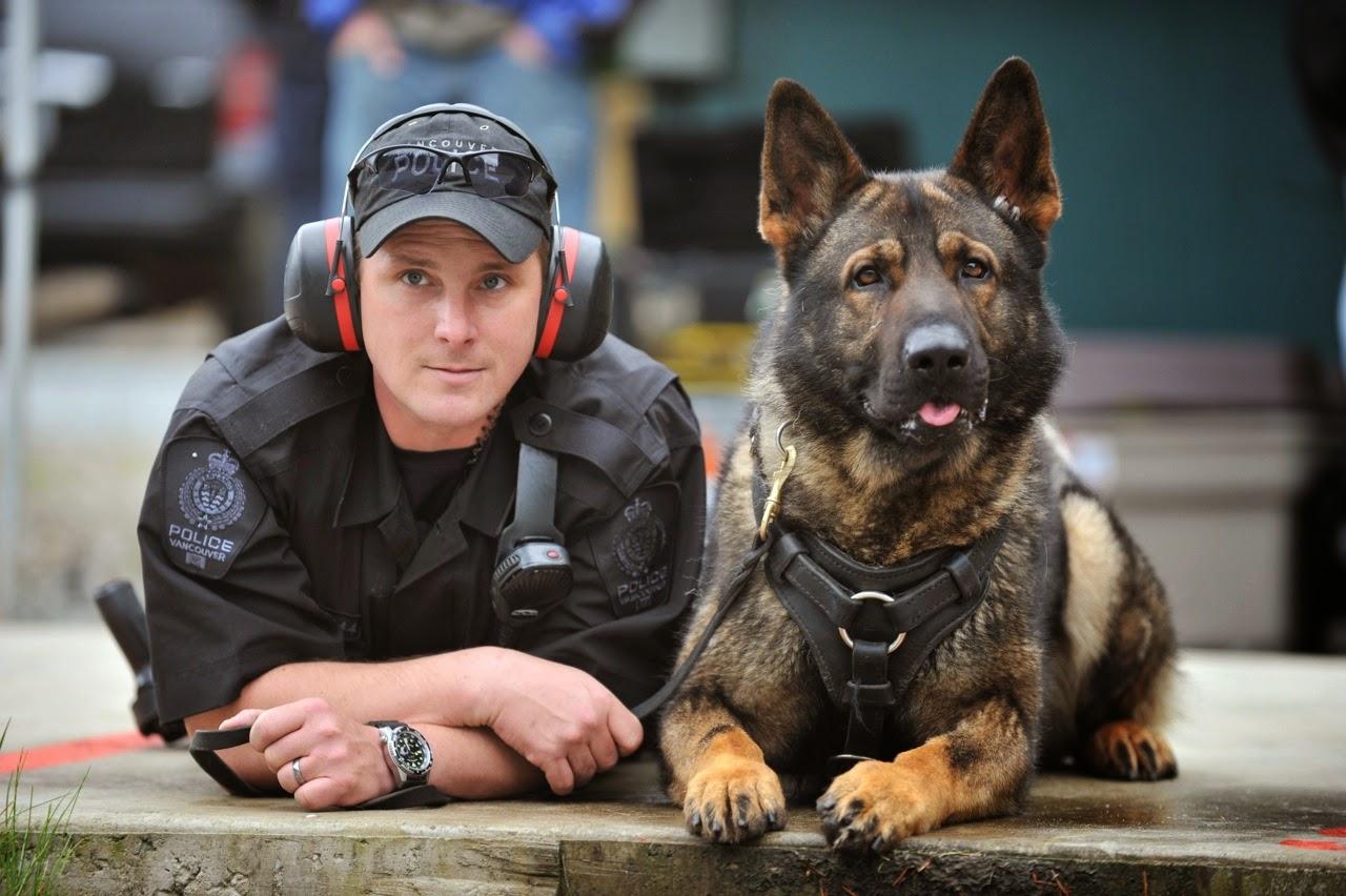 صورة كيفية تدريب الكلاب , تدريب على النباح بالامر