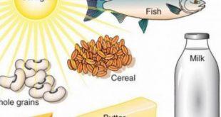 صورة اين يوجد فيتامين د , فيتامين د واهميته والغذاء الخاص به