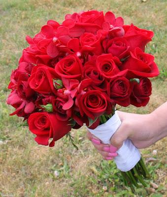 صورة صور ورد جميل , اجمل اشكال الورود في الصباح 2022 8