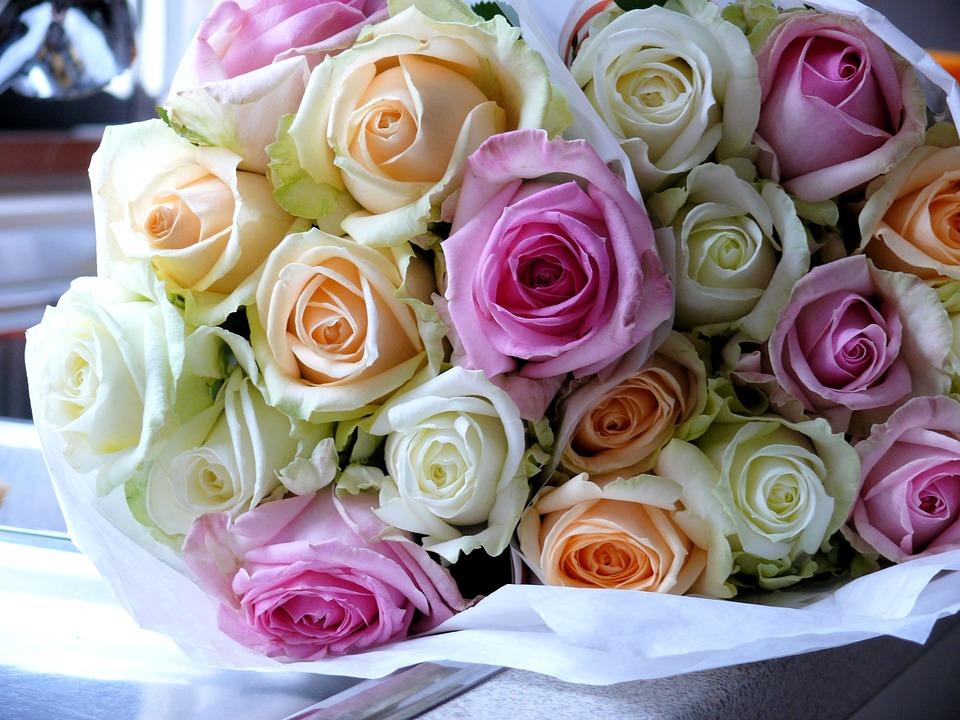 صورة صور ورد جميل , اجمل اشكال الورود في الصباح 2022 9