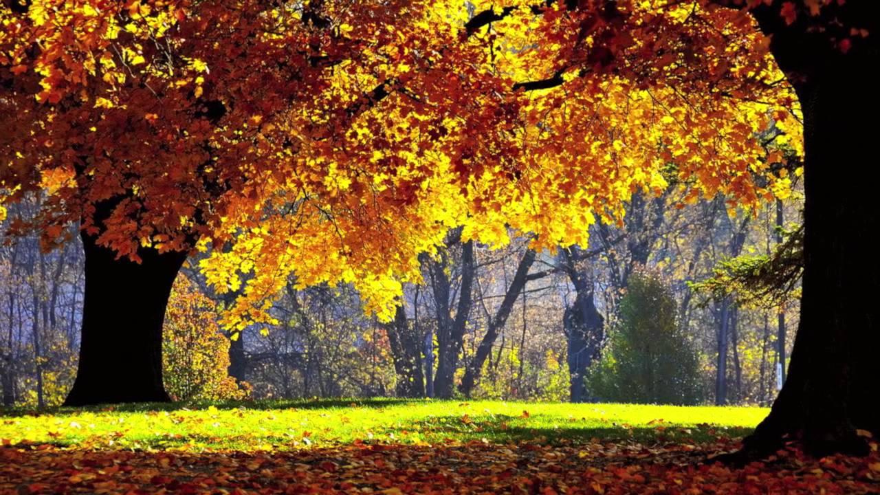 صور صور الطبيعة الجميلة , الطبيعة الخلابة في صور