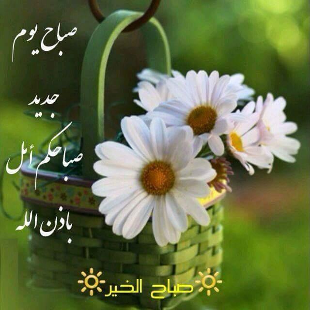 صورة صور للصباح , اجمل صور لاجمل صباح 2137 3