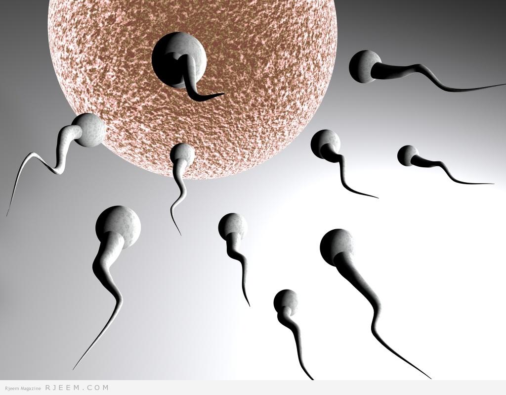 صورة افضل وضعية للحمل , الطريقة المثلي لحدوث الحمل