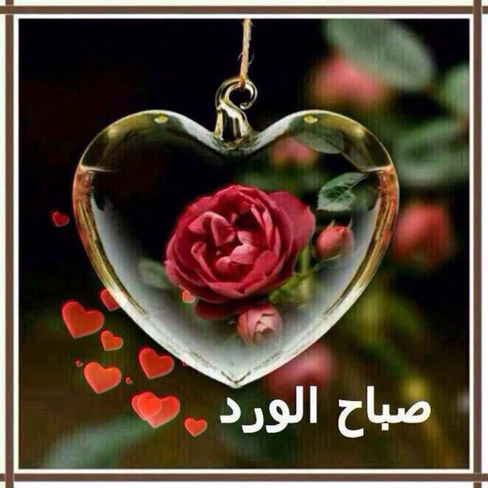 صورة صباح الخير حبيبي , اجمل رسائل الصباح للحبيب