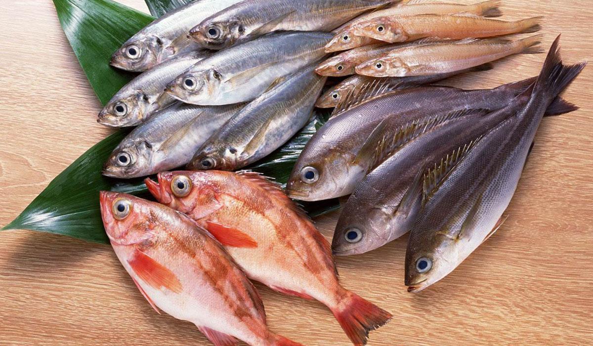 صور فوائد السمك , اهم فوائد اكل السمك