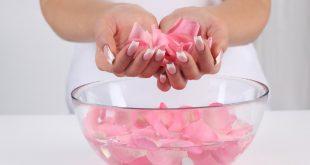 استخدامات ماء الورد , فوائد واستخدامات ماء الورد