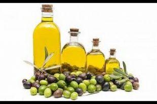 صورة فوائد زيت الزيتون للبشرة , عصرة الزيتون واهميتها للبشرة