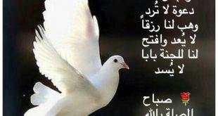 صورة بوستات صباحية , صور جميلة لصباح الخير
