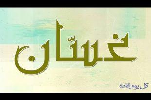 بالصور معنى اسم غسان , الموضح من تفسير معنى اسم غسان 0 13 310x205