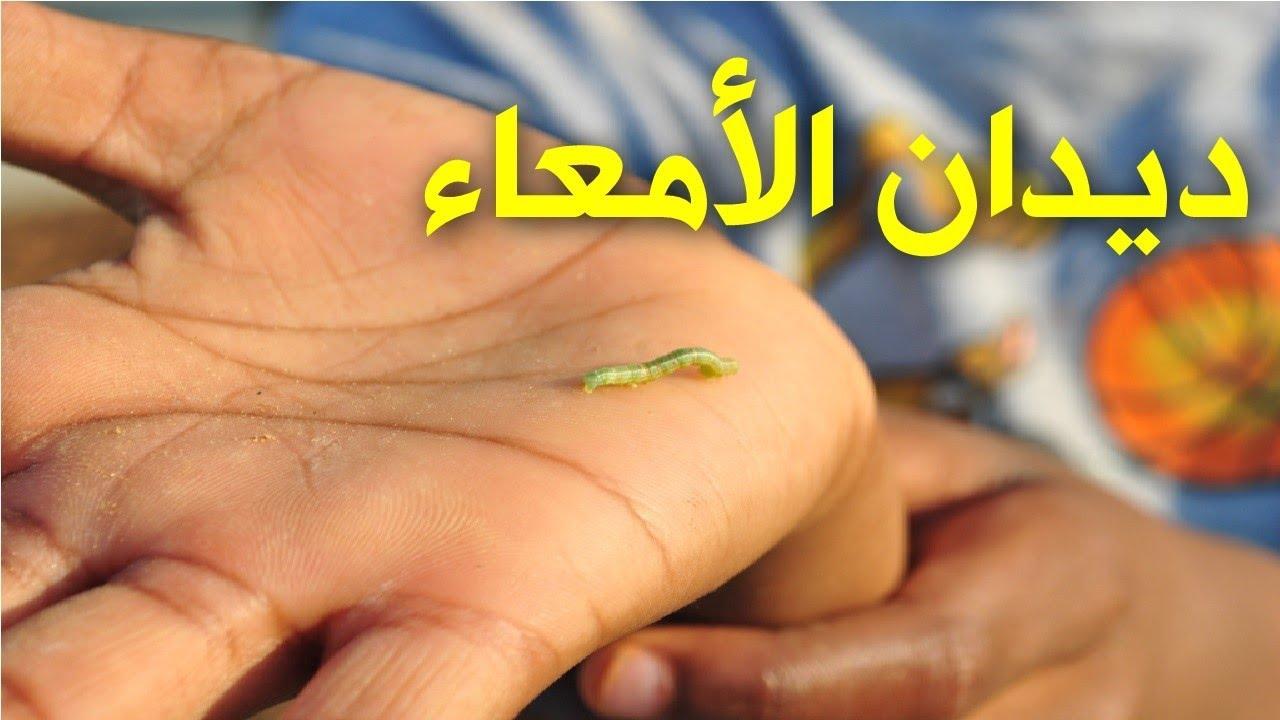 صور علاج الديدان , القضاء على الديدان