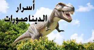 صور معلومات عن الديناصورات , حقائق لا تعرفها عن الديناصورات