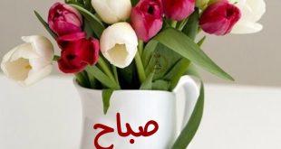 صورة احلى صباح الخير , صور كلمات صباح لصباح مميز
