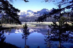 صور صور من الطبيعة , صور مدهشة لم تراها من قبل