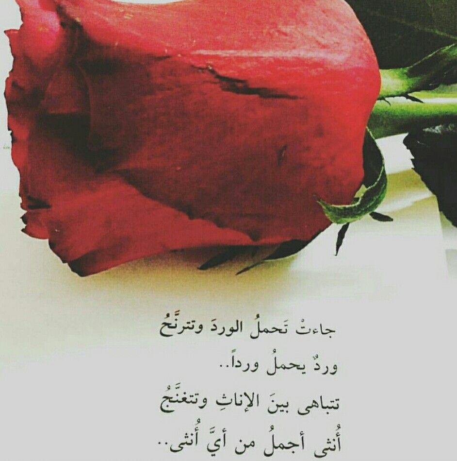 صورة كلمات عن الورد , اروع الصور والكلمات عن الورود 3096 2