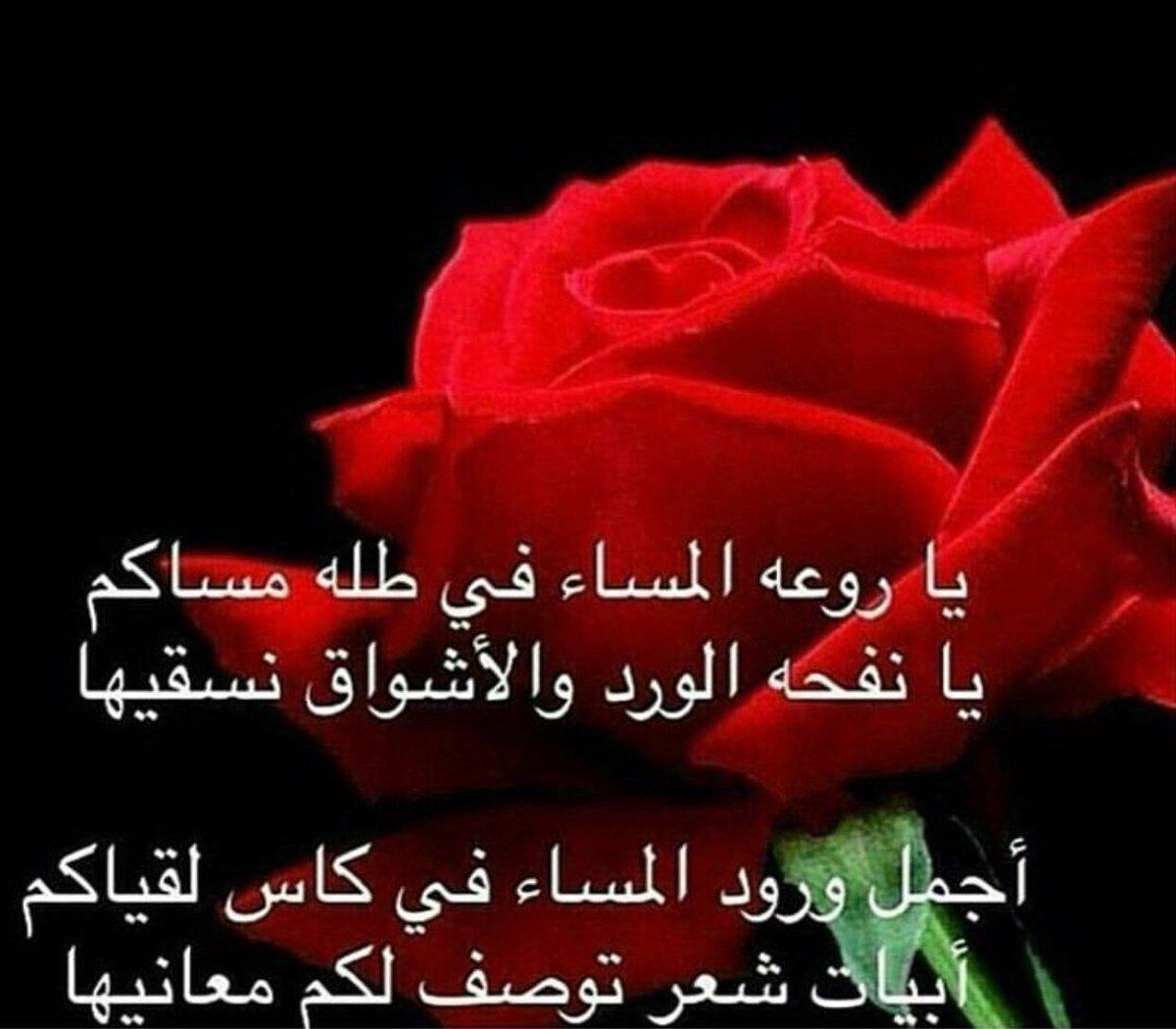 صورة كلمات عن الورد , اروع الصور والكلمات عن الورود 3096