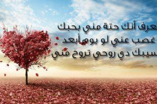 بالصور رسائل حب قصيرة , صور لاصدق رسائل الحب 3138 12 310x205