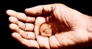صورة جرعة سايتوتك للاجهاض , معلومات عن جرعة سايتوتك للاجهاض