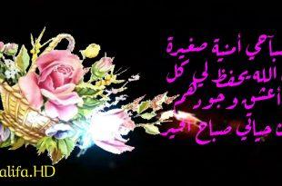 صورة احلى صباح للحبيب , صور صباح الخير حبيبى