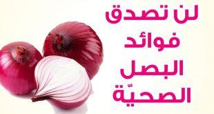 صور فوائد البصل , ماهى فوائد البصل للشعر