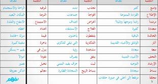 صورة معاني الكلمات العربية , مفهوم كلمات اللغه العربيه