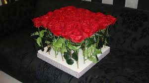 صورة ورد طبيعي , اجمل الورود الطبيعيه الحمرا 5201 7