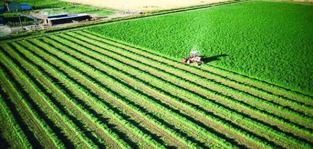 صورة تعبير عن الزراعة , اهمية الزراعة في حياتنا