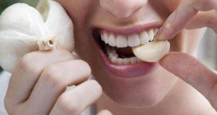 صورة علاج حب الشباب بالثوم , تاثير الثوم في علاج حب الشباب