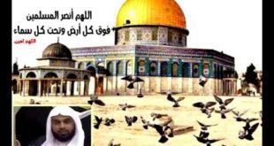 صور دعاء لاهل فلسطين , دمتي ارضا طيبة يا ارض القدس