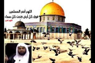 صورة دعاء لاهل فلسطين , دمتي ارضا طيبة يا ارض القدس