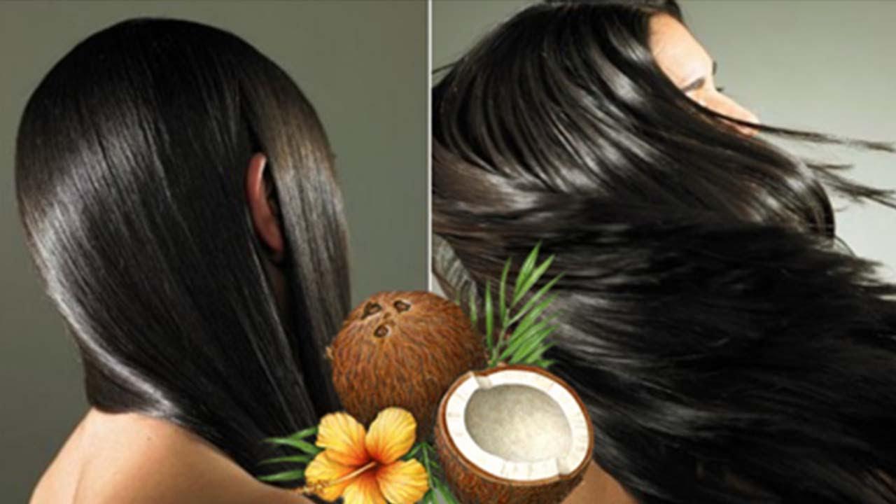 صورة خلطة حليب جوز الهند للشعر , اجمل وصفات الشعر الطبيعية باستخدام جليب جوز الهند