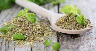 صورة ما فوائد البردقوش , افضل انواع الاعشاب الطبيعية لعلاج الكحة