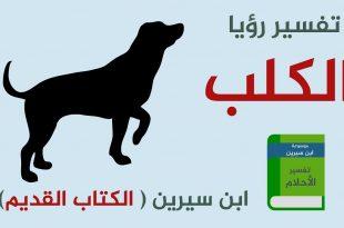 صورة تفسير الاحلام الكلب , تعرف على رؤيه الكلب ف عالم الرؤى والاحلام