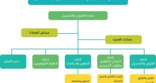 صورة رسم الهيكل التنظيمي , انواع الهيكل التنظيمى للشركات