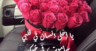 صورة عبارات عن الورد , مافيش ارق من الكلمات المعبرة عن الزهور