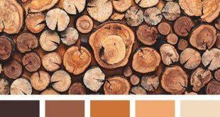 صورة دلالات اللون البني , اللون البني في الملابس