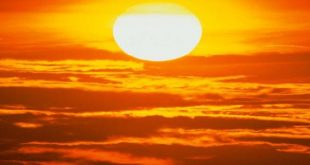 صورة فوائد الشمس , ما هي فوائد الشمس للجسم