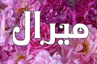 صورة اسم ميرال في علم النفس , ما معنى اسم ميرال في القران الكريم