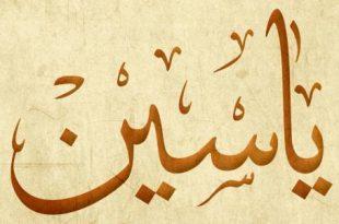 صورة معنى اسم ياسين , اسم ياسين في المعجم