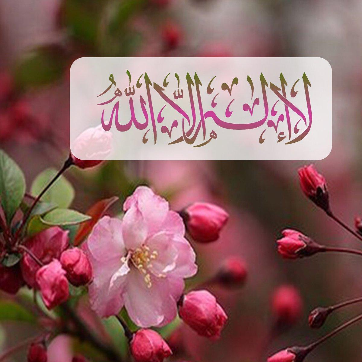 صورة اجمل الصور الدينية , منوعات دينيه رائعة 632 6